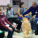 group dog therapy