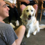 Dogs at the TALK Institute with students