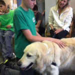 Nellie's schoolhouse therapy dog with TALK Institute students