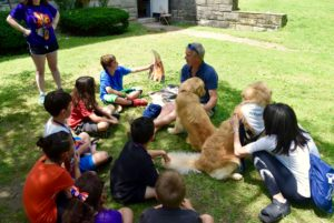 Group of campers sitting with Tom Richards and two of Nellie's dogs