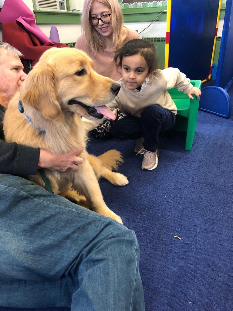 Dog during school visit