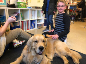 Golden dog with student