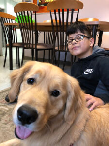 Service Dog with student
